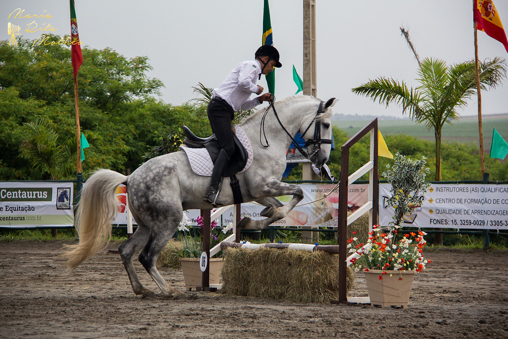 Luiz Carlos Oliveira: vitória nas três seletivas brasileiras para a I Copa do Mundo de Equitação de Trabalho (Foto: Maria Rita Mothero/ABPSL)