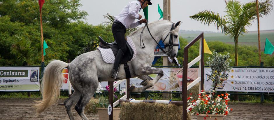 Brasil sedia a I Copa do Mundo de Equitação de Trabalho