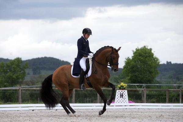 João Victor Macari Oliva com Escorial Horsecampline no CDI de Abrantes 2021 (foto arquivo Rui Godinho)