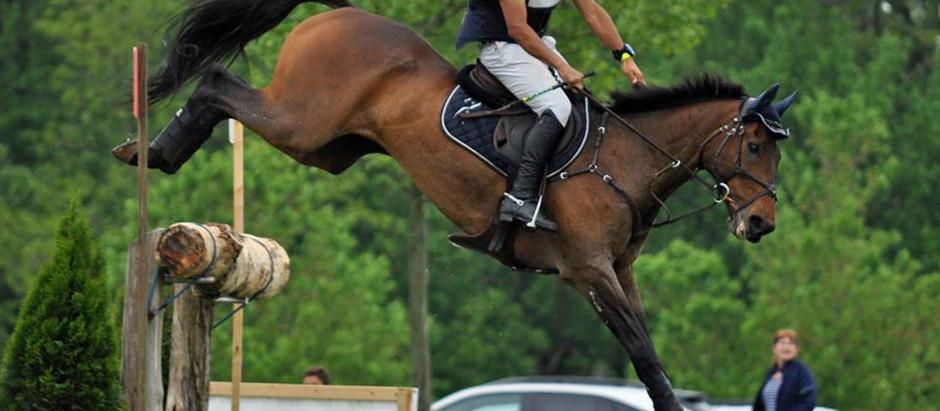 Nilson Moreira da Silva habilitado para integrar o Time Brasil de CCE nos Jogos Equestres Mundiais