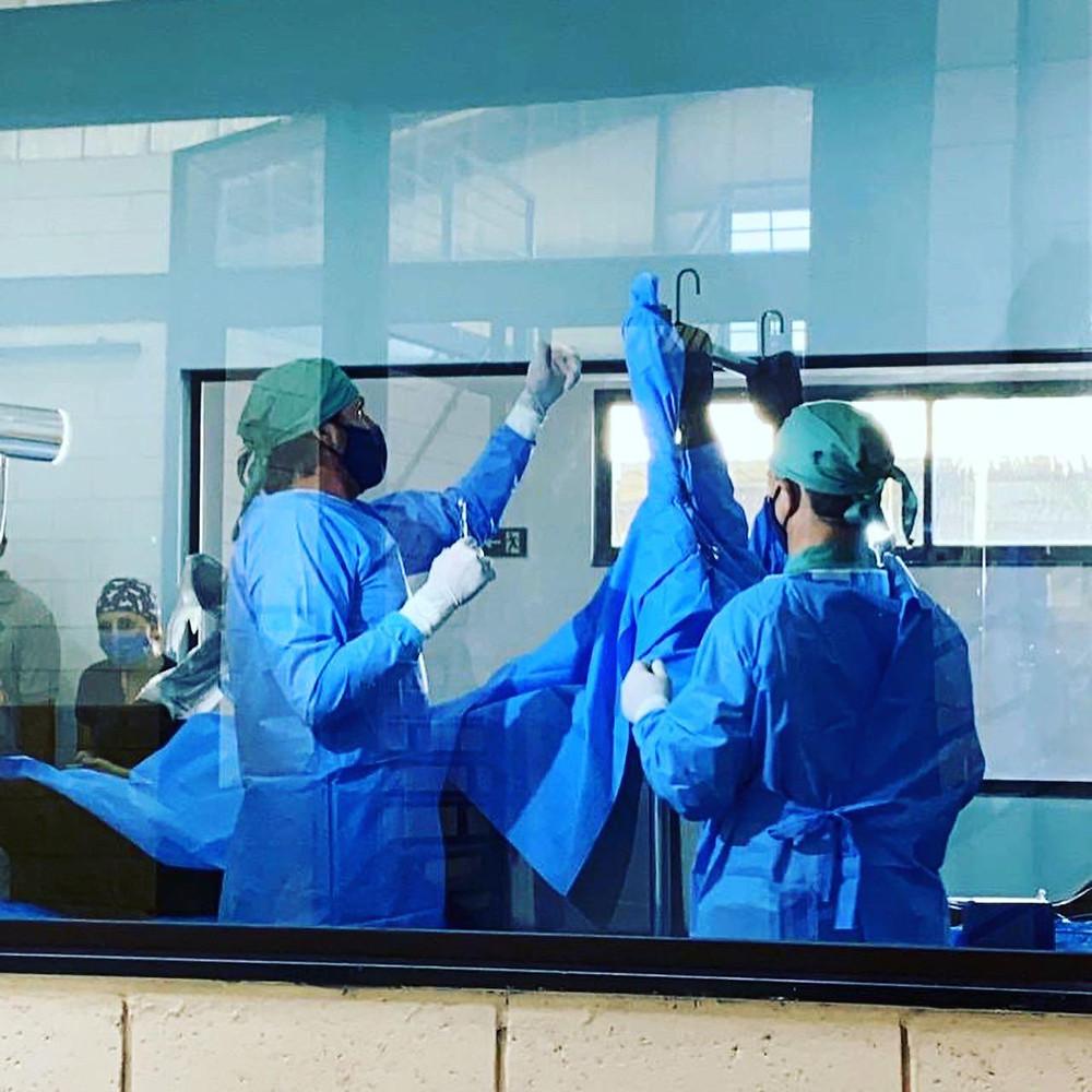 Primeira cirurgia realizada na nova estrutura do Rondon Saúde Animal (arquivo)
