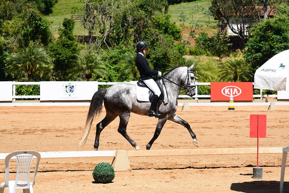 Sara Godoy / Friend do Vouga: vitória na série Cavalos Novos 6 anos (foto Max Araújo Rodrigues / ABPSL)