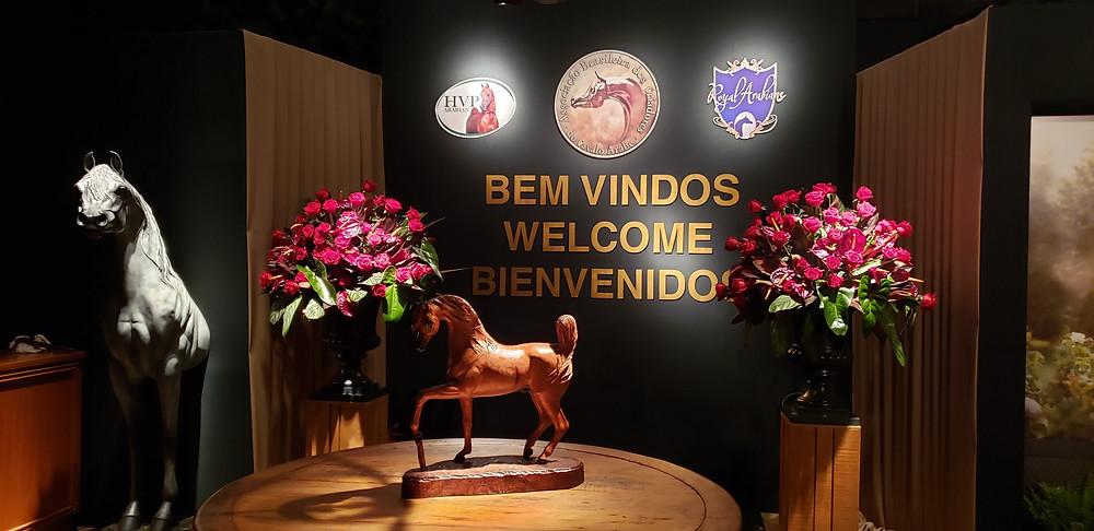 Começou a 39ª Exposição Nacional do Cavalo Árabe. foto Assessoria de Imprensa