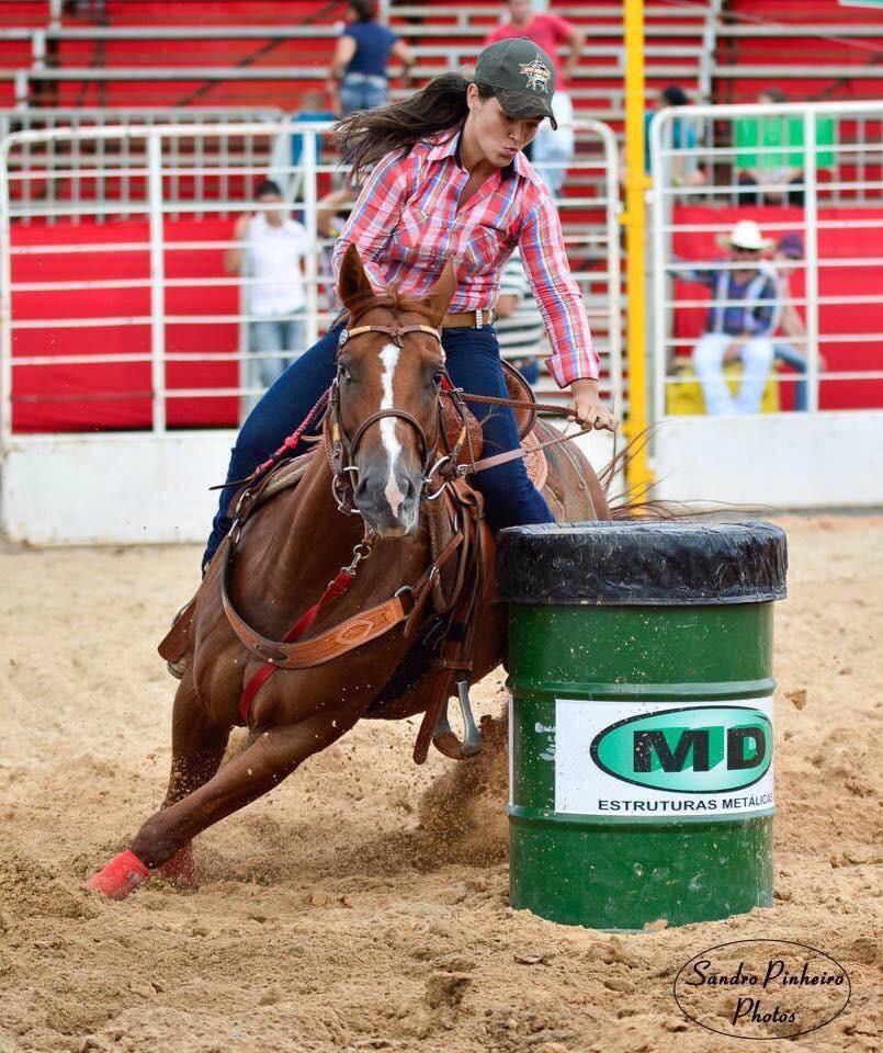 Dakota_Best_Skip oportunidades de bons negócios, com cavalos de boa genética