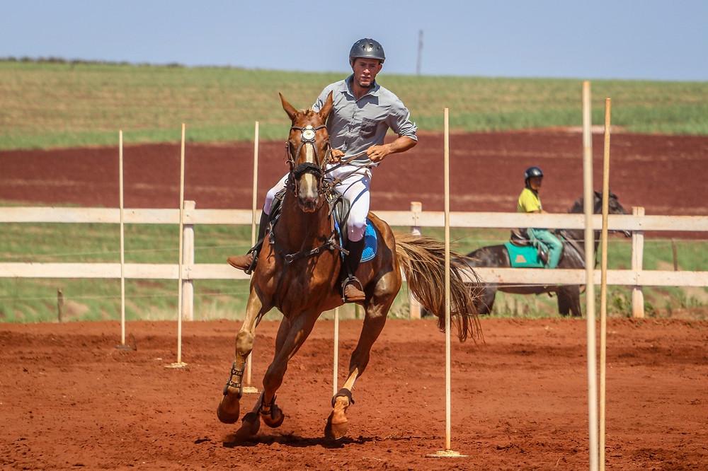 Taj Mahal Montado montado por Jovacir Vitorelli da Silva – Hípica Vitoreli – Botucatu/SP Campeão Cavalos Novos