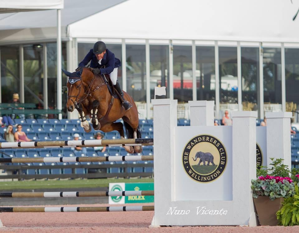 No último domingo (15/01), no Winter Equestrian Festival 2017,o cavaleiro Celso Arianiemplacava de novo com sua égua Dutch Warmblood BENTE(propriedade de Fátima Morales & Rodrigo Padilla)