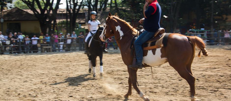 Diferenças entre Andar a Cavalo e Montar Cavalo