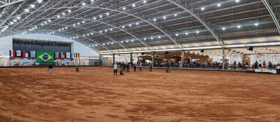 Exposição do Cavalo Árabe consagra melhor criador da raça