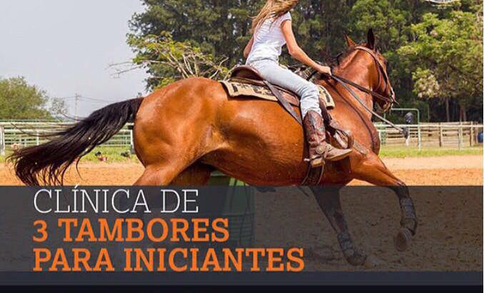 Universidade do Cavalo lança clínica inédita