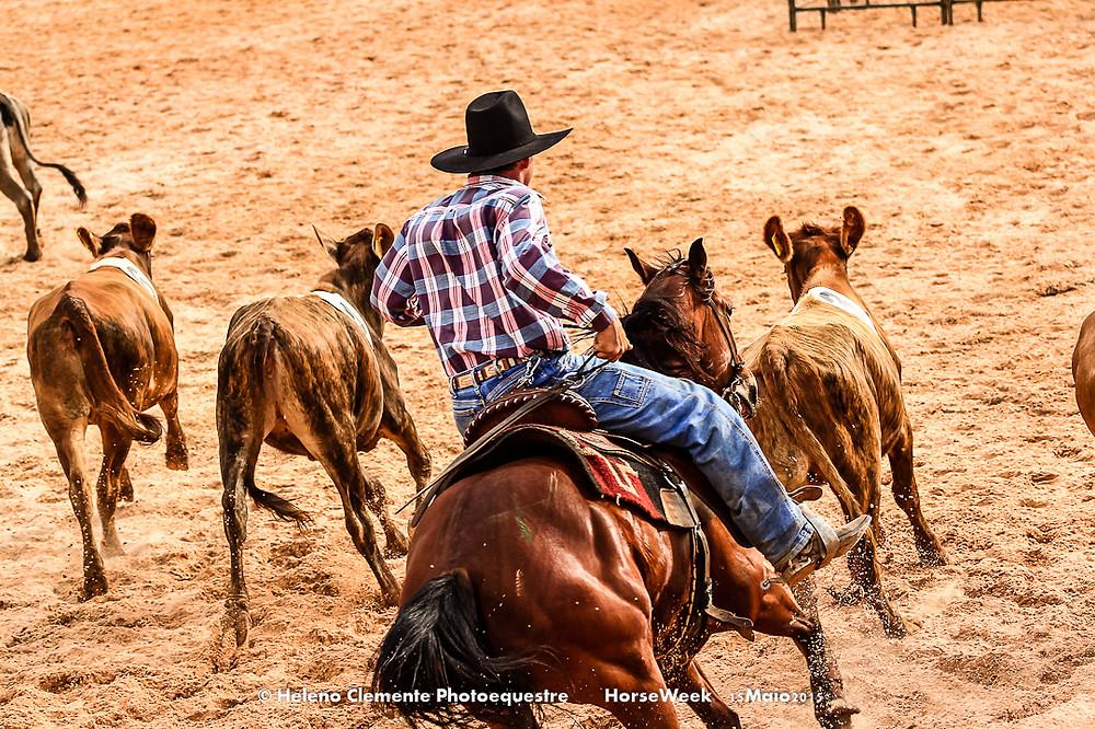 Horse Week 2016 começa amanhã -quinta-feira -em Jaguariúna(SP),destacando uma programação que reforça ocompromisso de firmar-se como omaiorencontro de cavalos, cavaleiros e criadores.De19a 22 de maio, a Horse Weekreunirá em um só lugar (Red Park Jaguariúna) as diversas modalidades equestres, leilões, congresso de medicina veterinária, exposição deequipamentos e produtos agropecuários, nutrição animal, vestuário, selaria e acessórios de competição.