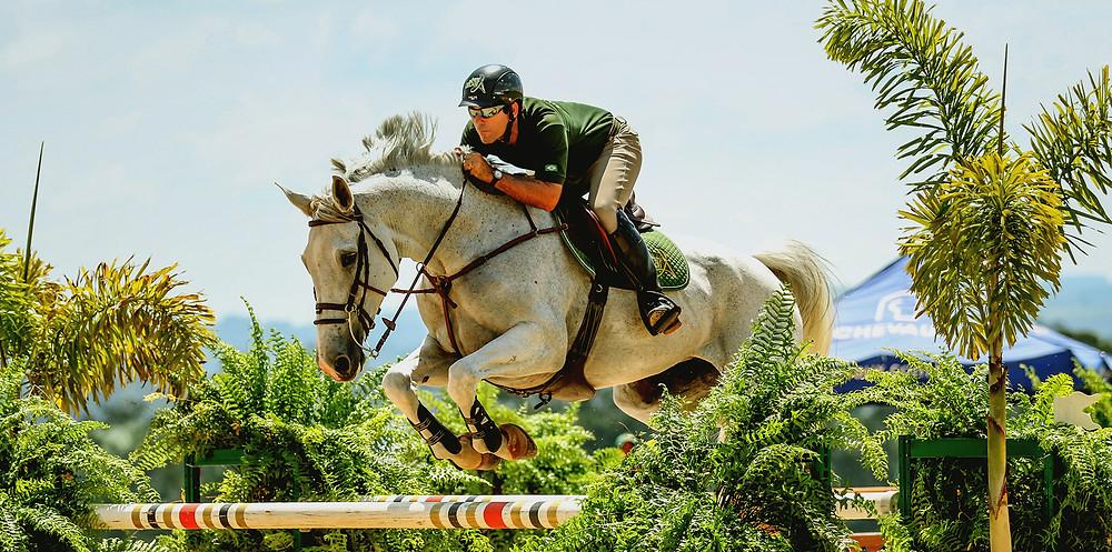 o Haras Albar conta com o cavaleiro Marcos Ribeiro Santos, o Marquinhos, que é um atleta muito bom, tem ambição, dedicação e conhecimento para um dia tornar-se cavaleiro olímpico.