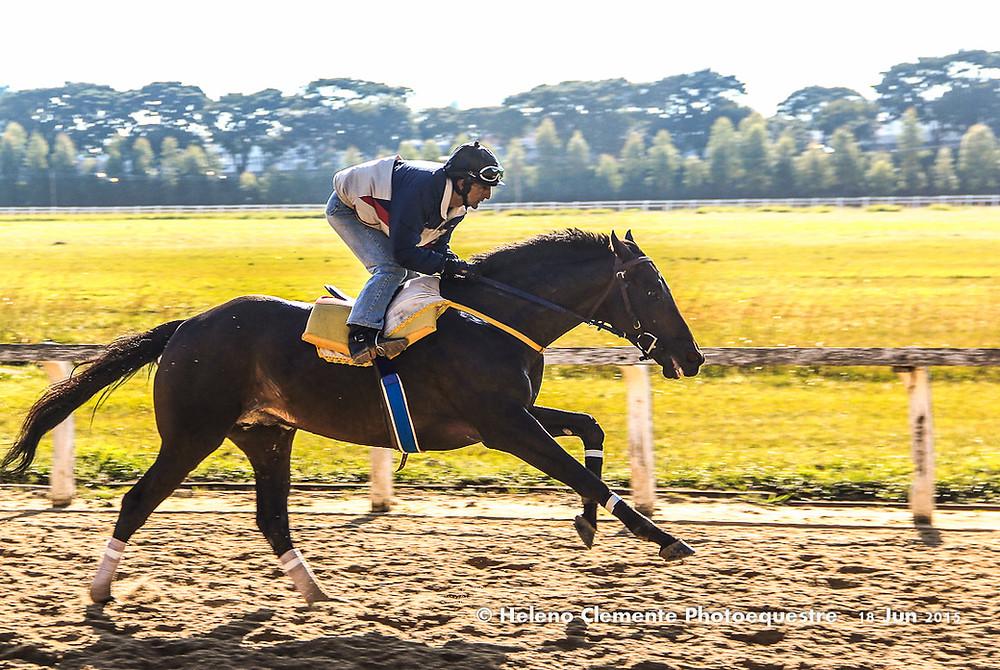 CT_Jockey-0592.jpg