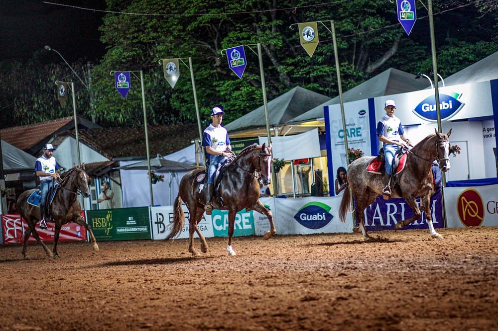 A marcha da raça esteve em destaque na 41ª Expo Nacional.  Crédito:Márcio Mitsuishi.