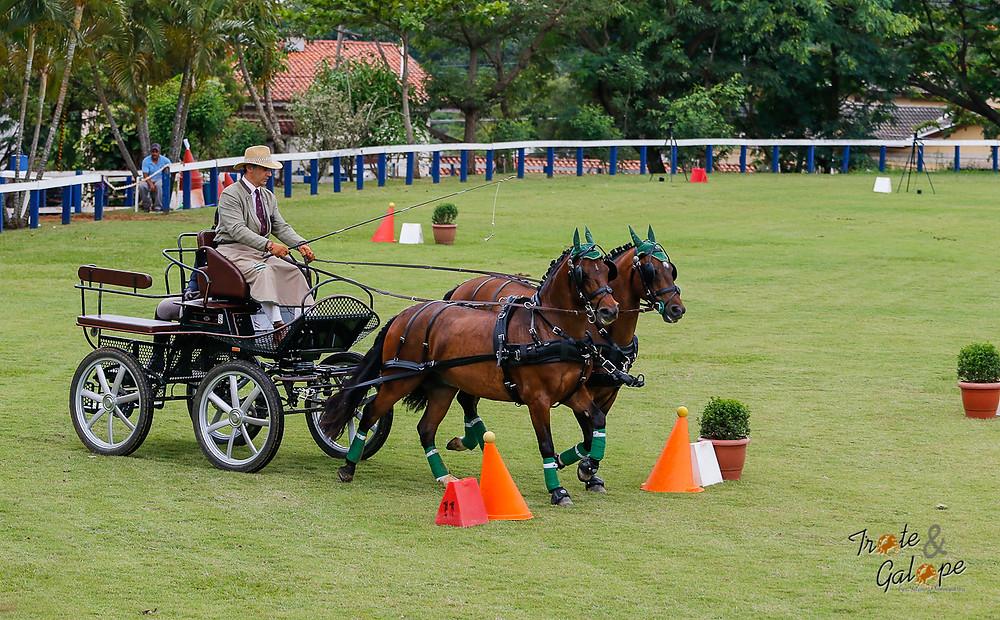 Eventos equestres serão destaque no Canal Rural