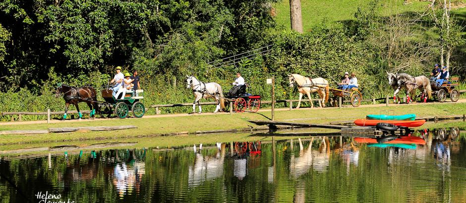 Amigos da Atrelagem e seus cavalos maravilhosos nas Montanhas do Japi