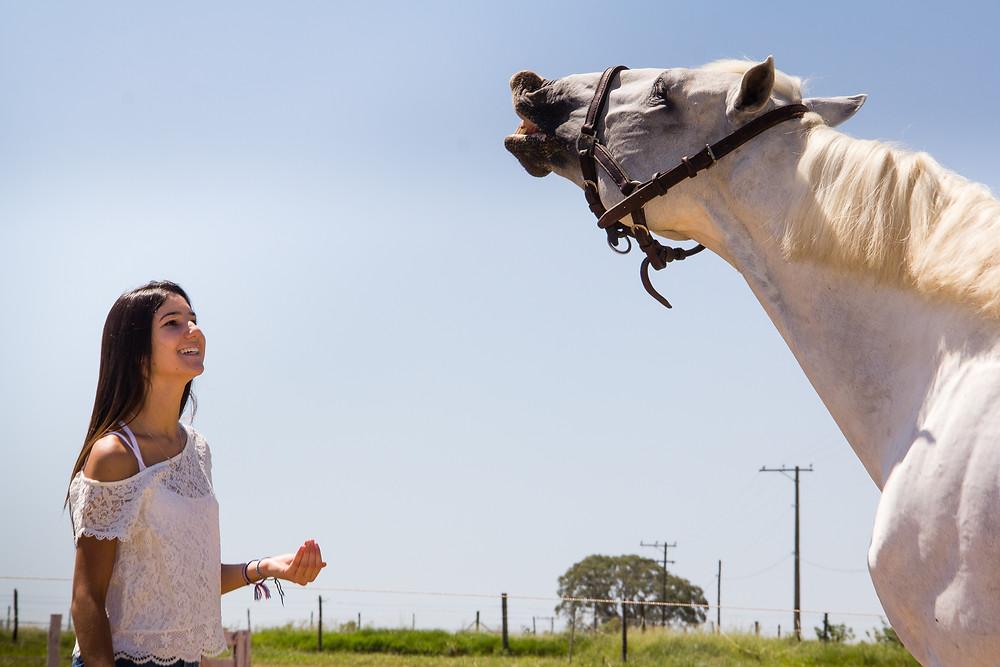 De acordo com um novo estudo, publicado no PLOS ONE, as caras de cavalos possuem grandes similaridades com a face humana. Depois de estudar profundamente a cabeça do cavalo, analisando sua musculatura (além de pesquisar vários vídeos), cientistas chegaram à conclusão que os cavalos sorriem da mesma forma que os humanos.
