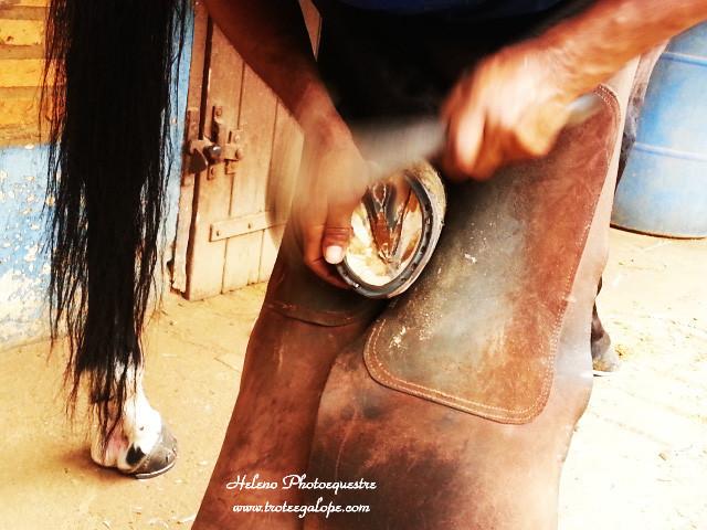 Na crença popular, ferradura é objeto que simboliza sorte, energia positiva e proteção.