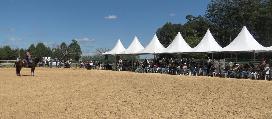 Horse Week sediará I Congresso de Equinocultura, em parceria com a Universidade do Cavalo