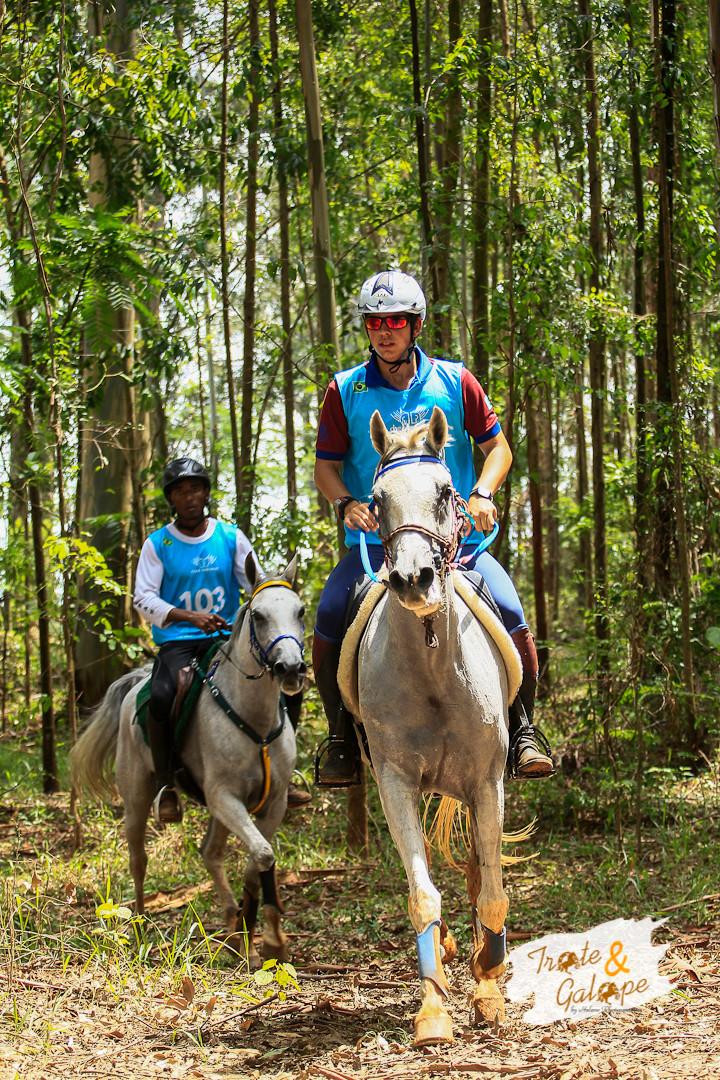 Enduro Equestreé um dos esportes regulamentados pelaFEI - Fédération Equestre Internationale -que mais cresce em número de eventos por ano.
