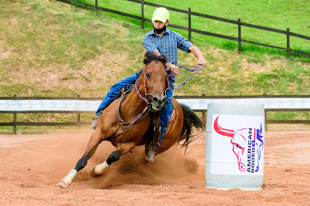 Miguel Dias Neto - Campeão Aberta e menor tempo da pista (Machado Fotografia Equestre)