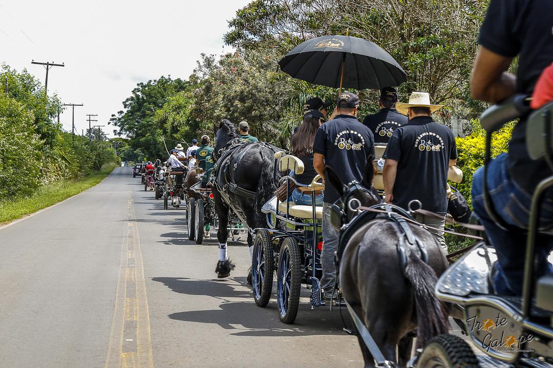 Desfile em Holambra
