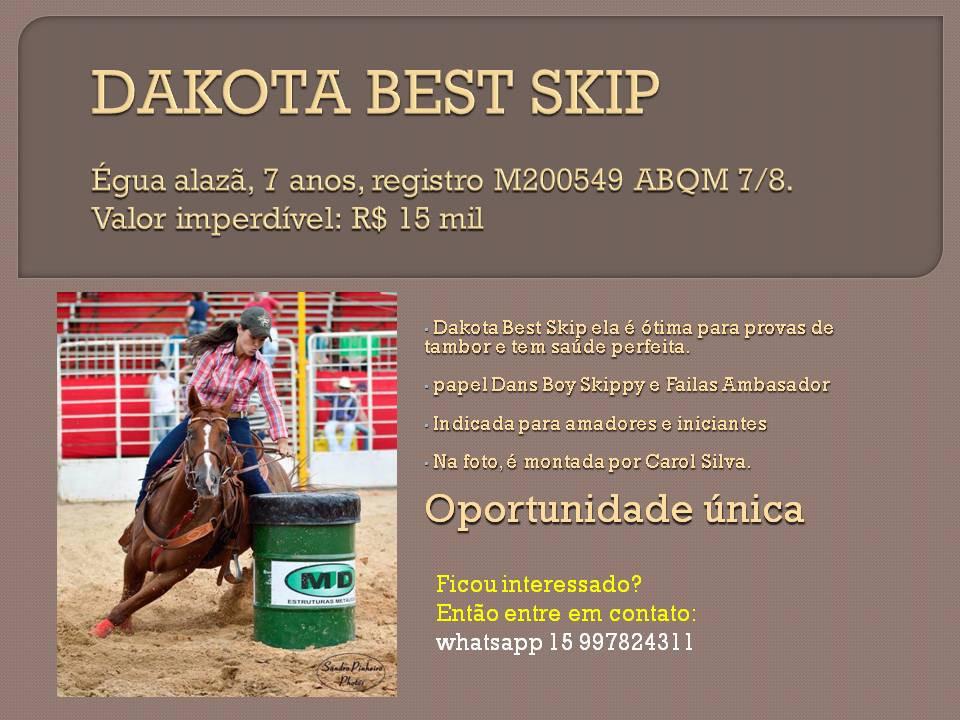 DAKOTA BEST SKIP oportunidades de bons negócios, com cavalos de boa genética