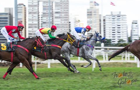 Nove páreos na noturna de Cidade Jardim; Betting 5 tem R$ 35mil de bonificação
