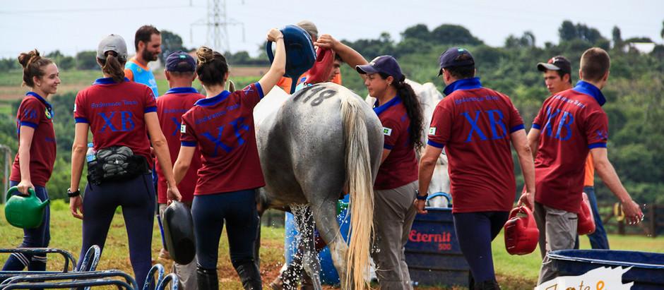 Vem aí a II Etapa Chevaux Brasília. É o enduro equestre que marca território.