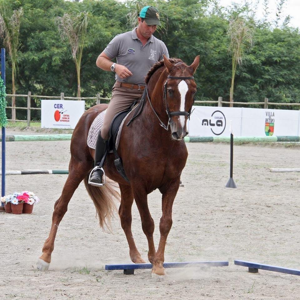 Já as apresentações funcionais serão organizadas pelo Campeão Mundial de Equitação de Trabalho, Fábio Rogério Lombardo (foto Ney Messi), do Haras da Prata.