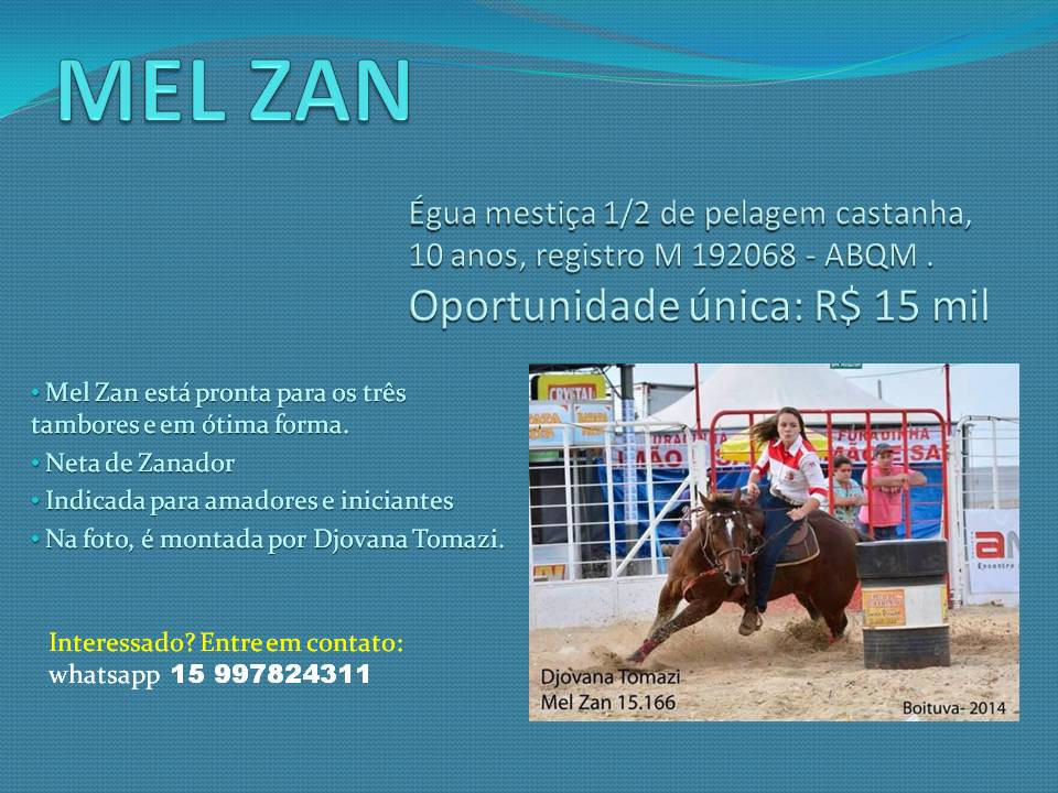 MEL ZAN oportunidades de bons negócios, com cavalos de boa genética