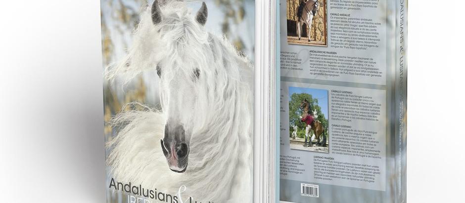 Lusitanos Interagro representam os cavalos ibéricos em volume espetacular