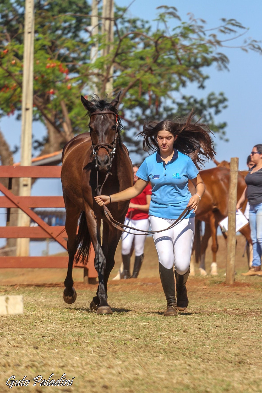 Hipismo Rural Completo acontece em Jaú