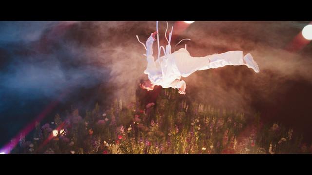 SVT - FALLIN' FLOWER MV