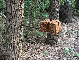tree2_product_page.jpg