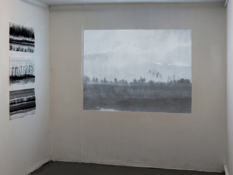 """Exhibition view of """"Fluid Drawing"""""""