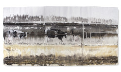Dairy Cows 6 (Single file to milking)