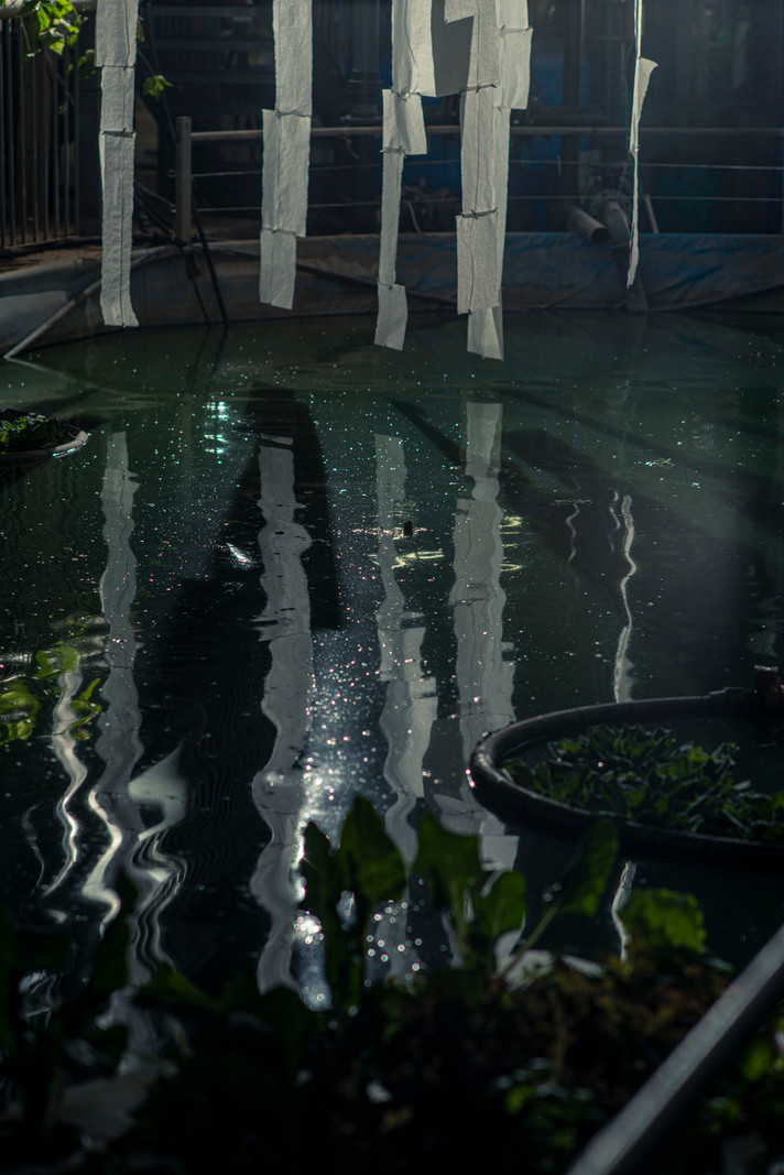Fall of Drops, detail