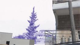 "Screenshot from video ""Foreign Tourist"", in ""Hunac Hon"" exhibition, Um El Fahem"
