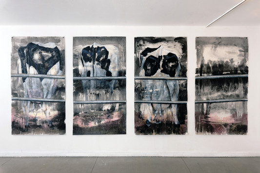 Untitled (Milking), exhibition view