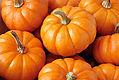 saisonale Pumpkins