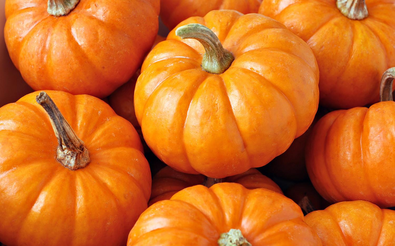 Seasonal Pumpkins