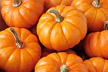 Seasonal Pumpkins