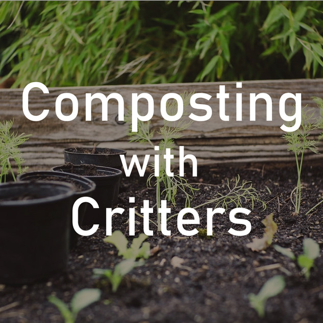 Composting with Critters