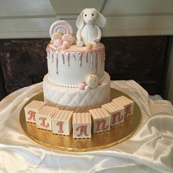 2018-07 BUNNY AND BLOCKS BABY SHOWER