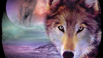 I Am Wolf Ladies vest (USA05)