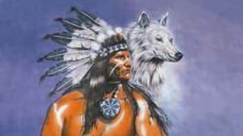 Native American Indian & Wolf Flag