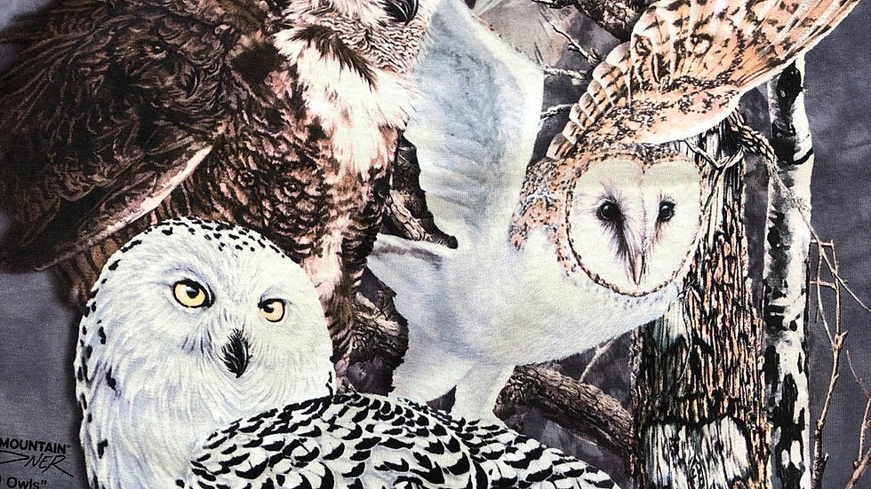 Find the 11 owls