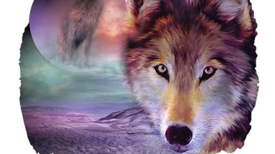 I Am Wolf White (USA24)