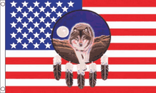 USA Wolf and Feathers
