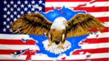 USA Eagle Flag 5' x 3'